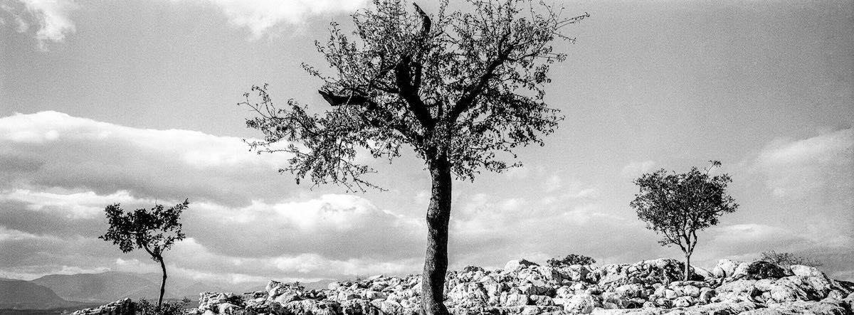 μαύρο λεία εξάπλωση φωτογραφίεςωραίο μεγάλο καβλί